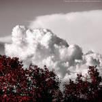 Panna of clouds 2 by FrancescaDelfino