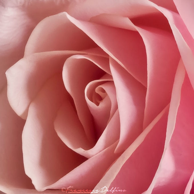 That's Amore 5 by FrancescaDelfino