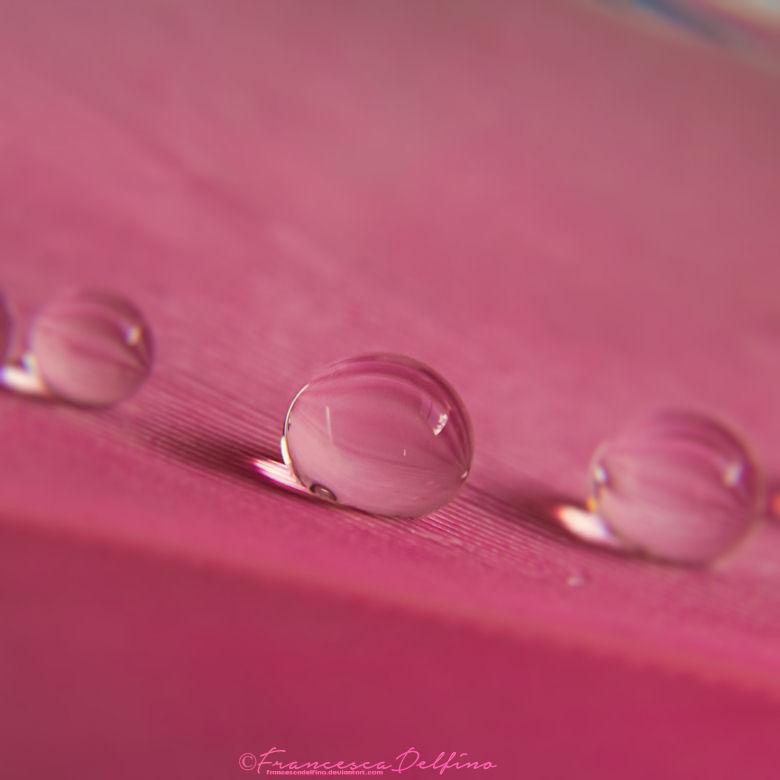 Drops 2 by FrancescaDelfino