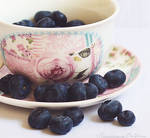 16. A cup of blueberries by FrancescaDelfino