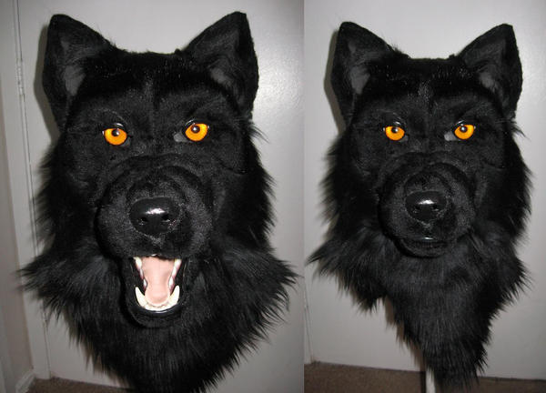 black wolf with yellow eyes - photo #10