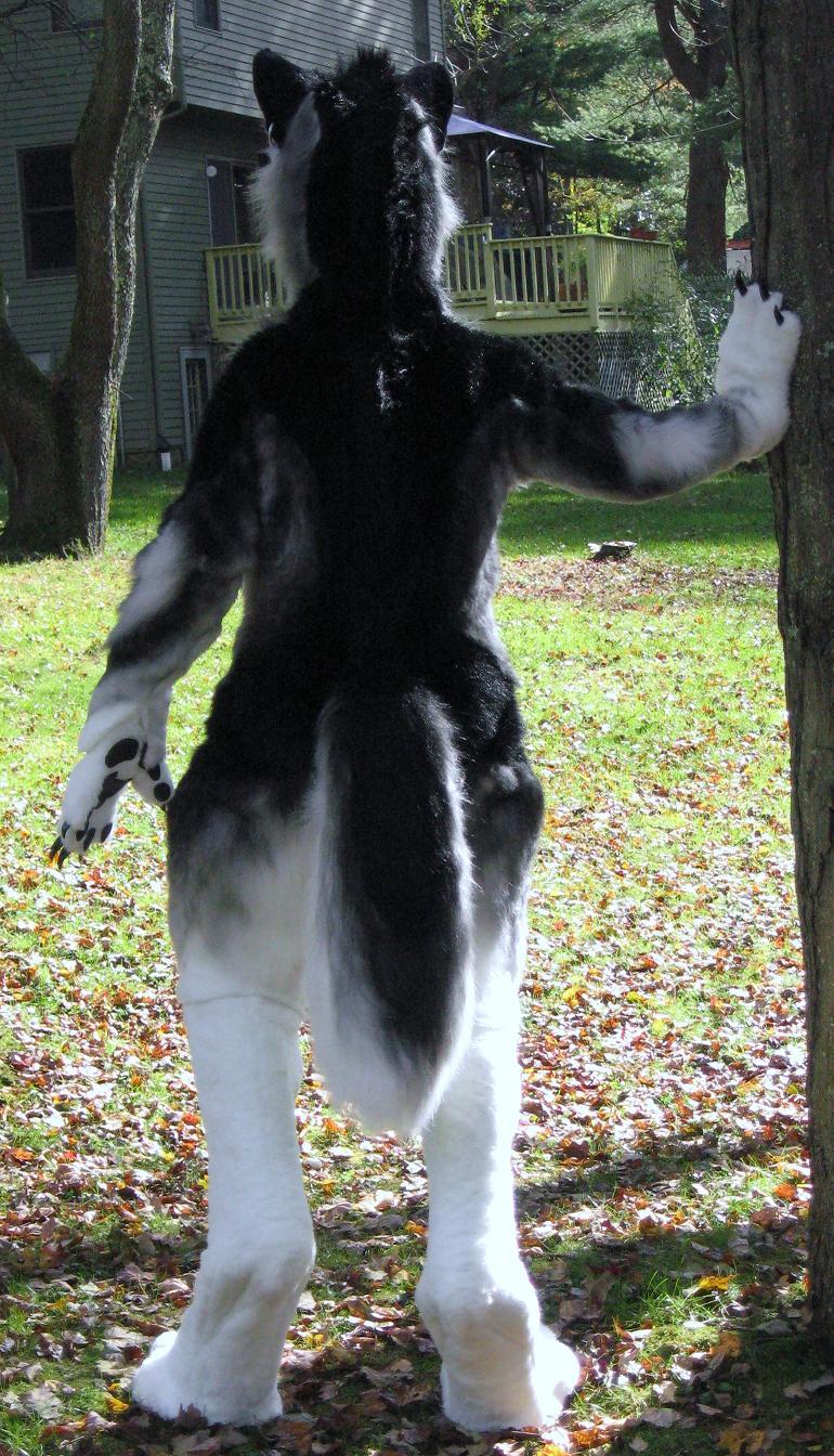 Silver werewolf back by Monoyasha