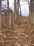 Autumn shrine