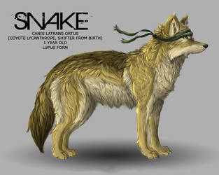 Snake, Lupus form by novaphase