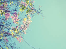you and all the flowers.