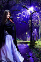 Raven Night by tinca2