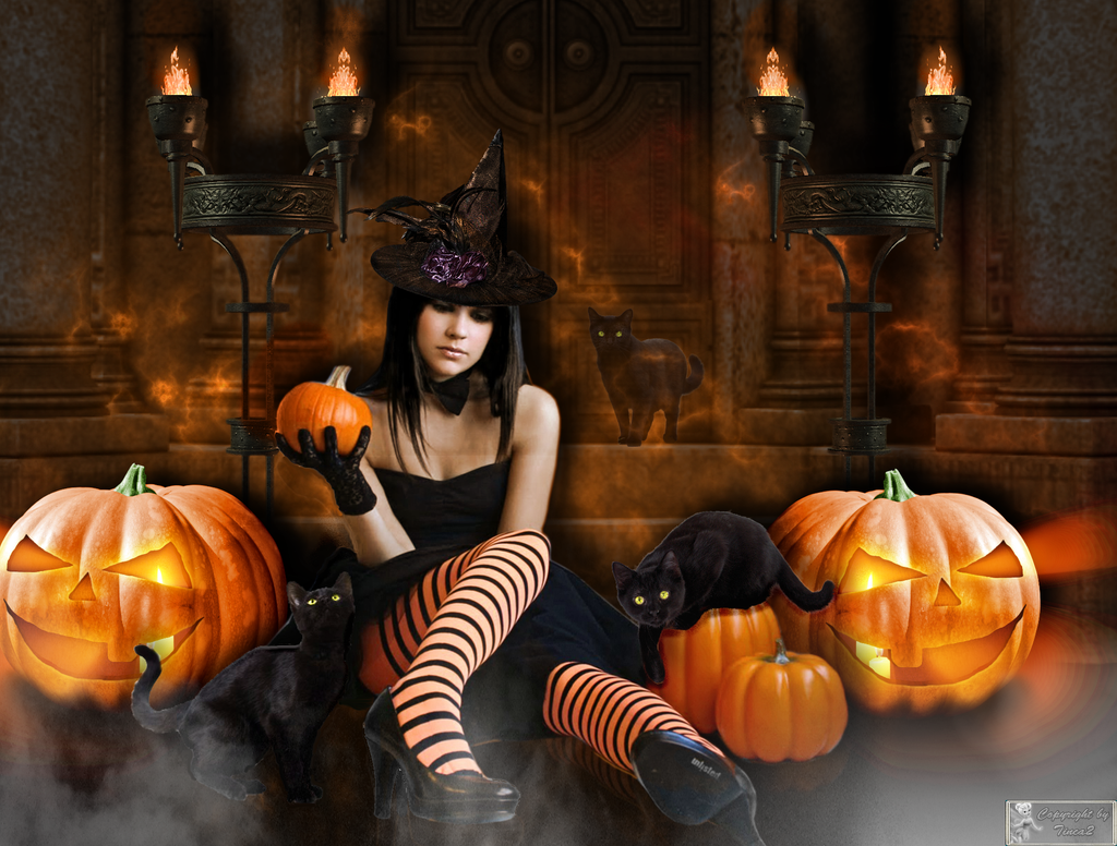 Inappropriate Halloween Costumes For Adults