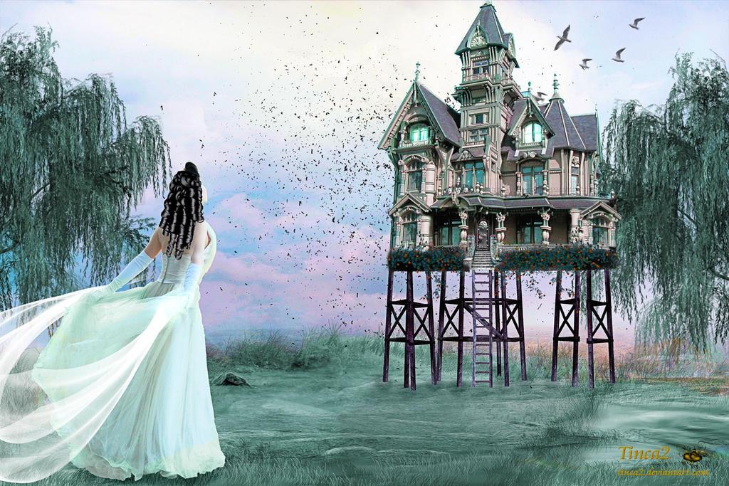 Magic House By Tinca2 ...
