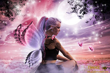 Butterfly by tinca2