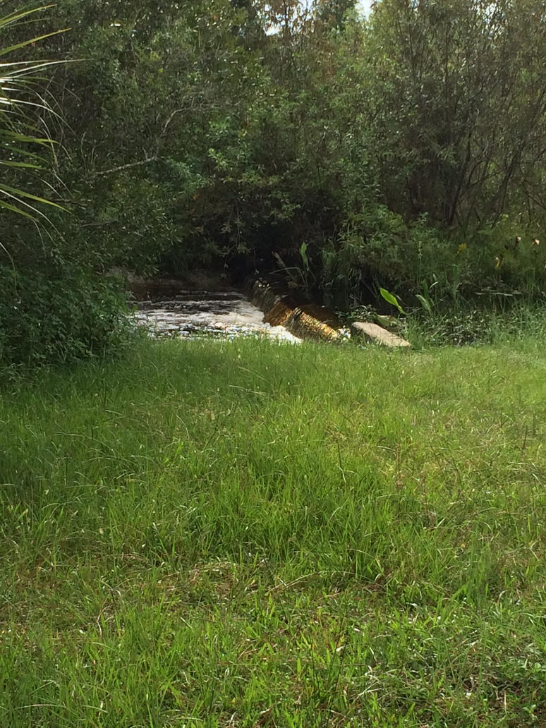 floody falls by puppy-dreams