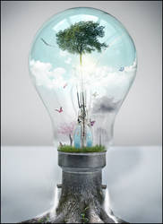 I Dream of a Brighter Future