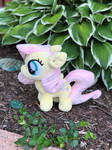Fluttershy for Bronycon