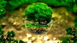 Spheric Nature