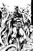 BATMAN by Brian Denham by DaneRot