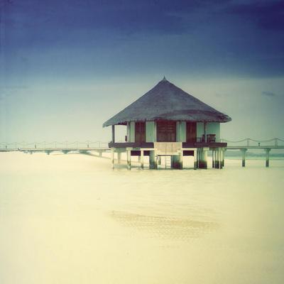 Maldives - Bidding Open by krylty