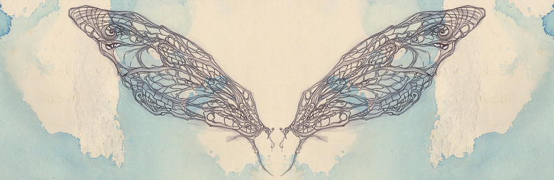 unfinished dragonfly wings