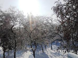 Winter in Serbia