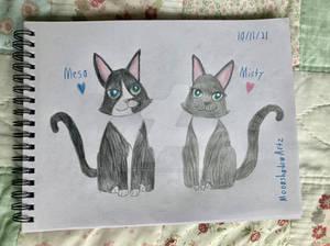 My Kitties -- Meso and Misty