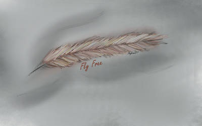 Feather, free use laptop background