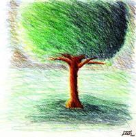 Tree - color pencil