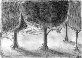 Trees - Pencil