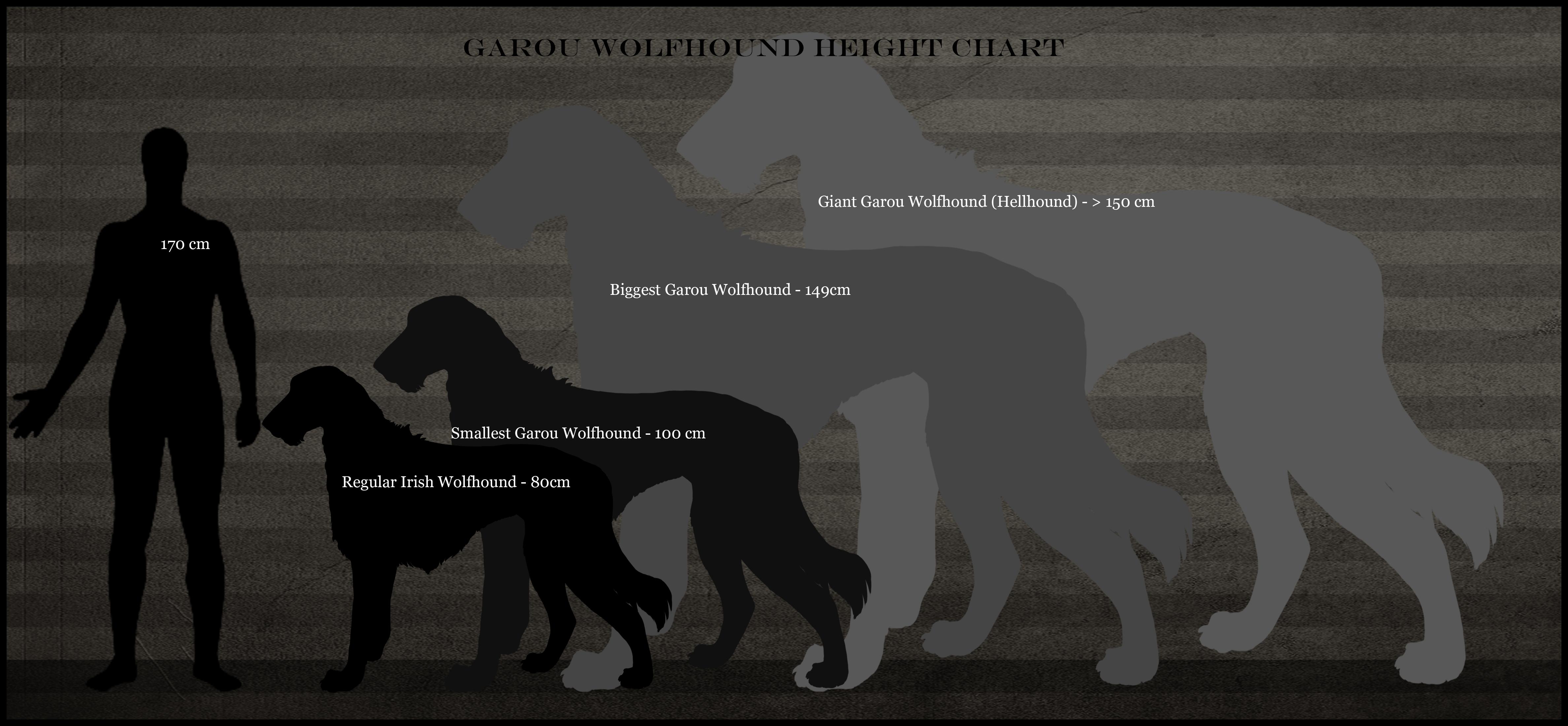 Garou Wolfhound height...