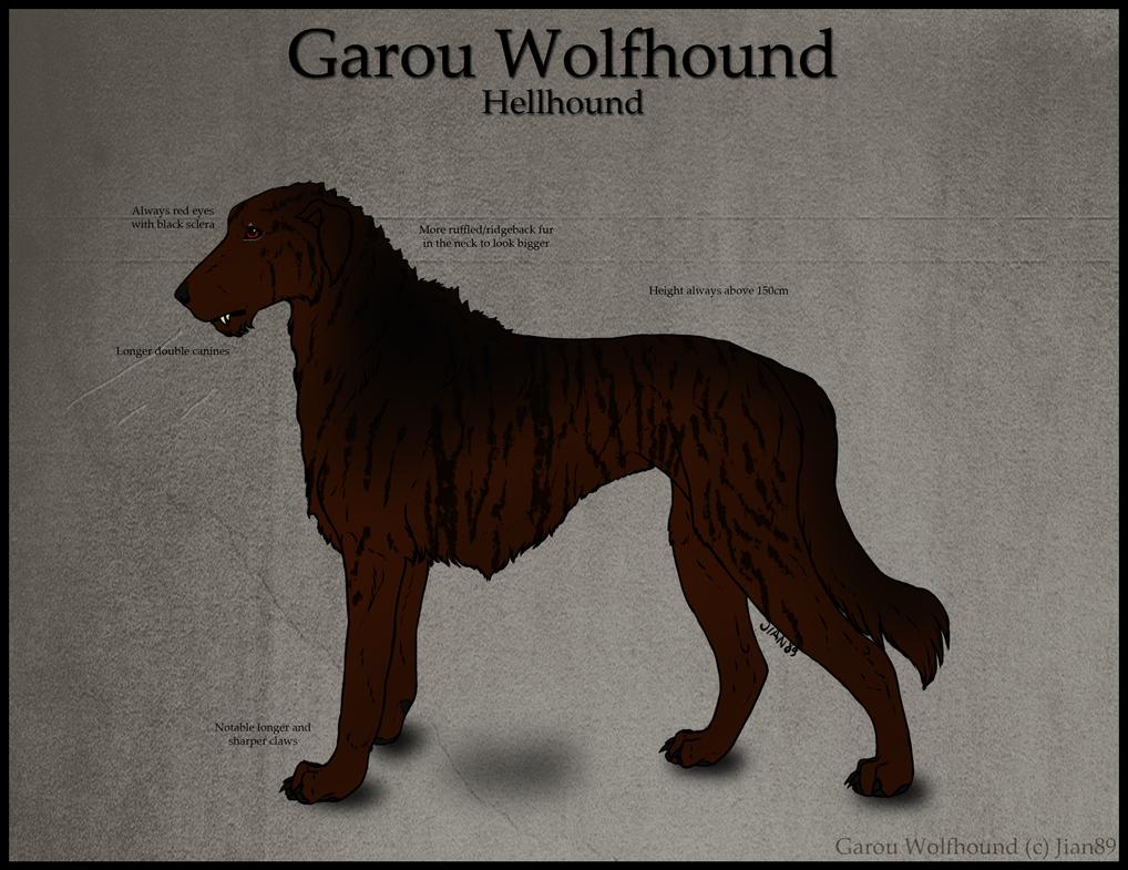 Hellhound Dog Breed