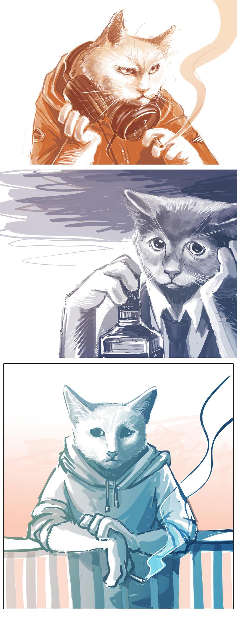 Cats by maXKennedy
