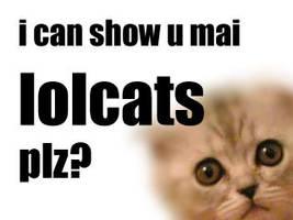 lolcats by Mendoza155