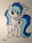 Custom Pegasus