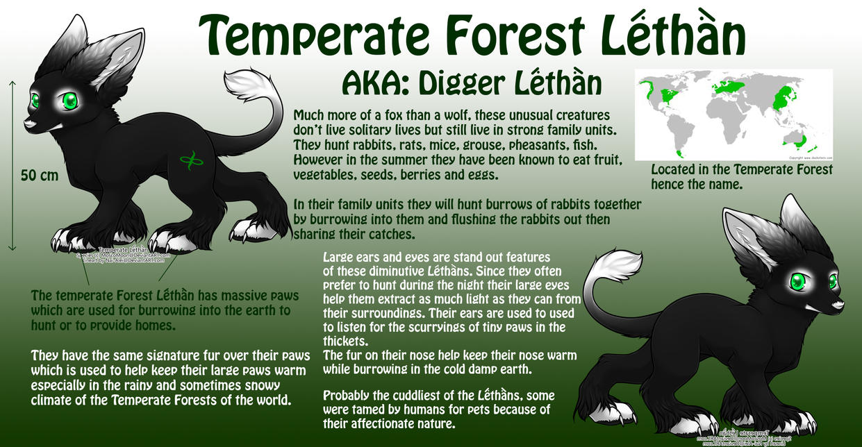 Temperate Forest (Digger Lethan) by MoscoMoon