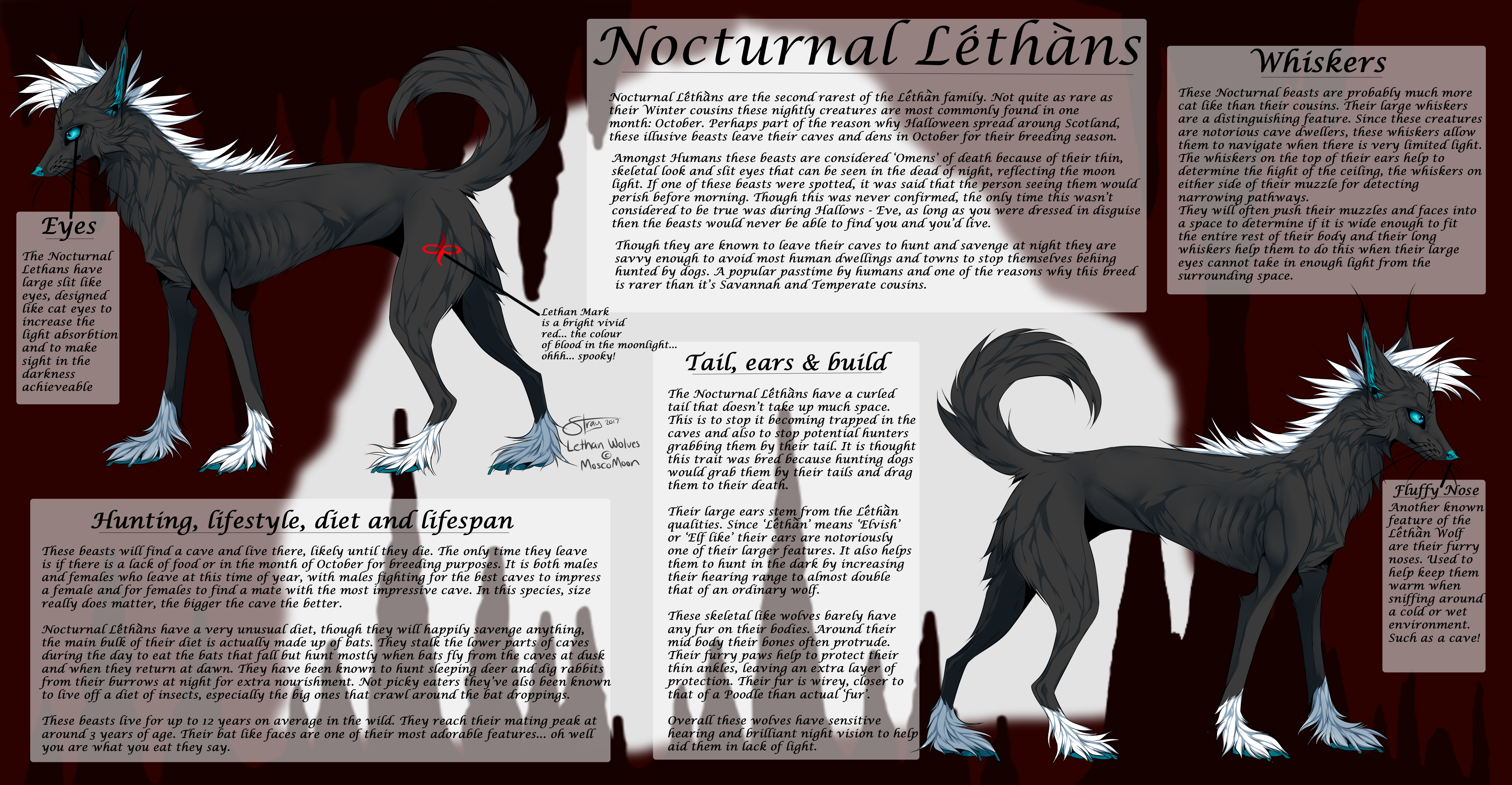 Nocturnal Lethan Reference by MoscoMoon