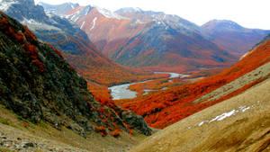 valle rio turbio