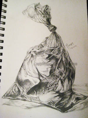 Fish in the Bag_Realism by AppleLove