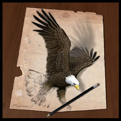 Eagle rise by Valentina-Remenar