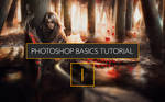 Photoshop tutorial- PS basics for newbies
