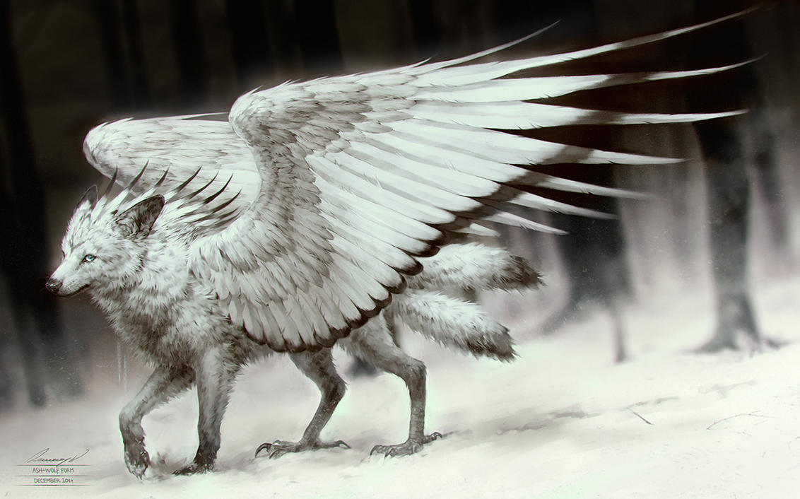 shadow winged wolf