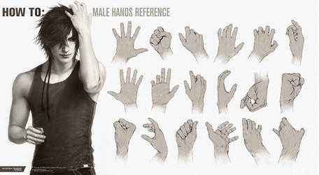 HOW TO: Male Hands Reference