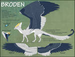Broden Reference Sheet