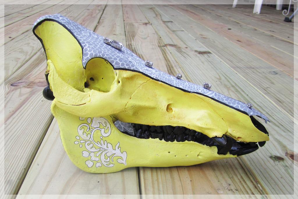 'Lacework' Boar Skull by Zenhi