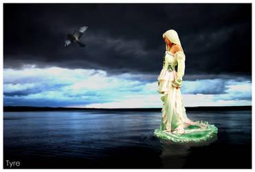 Fly Away Love by tairiJ
