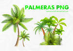 PACK PALMERAS PNG