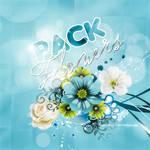 Pack Flowers!