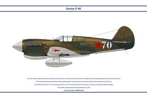 P-40E USSR 1 by WS-Clave