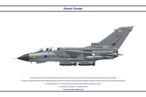 Tornado GB 15 Sqn 3 by WS-Clave