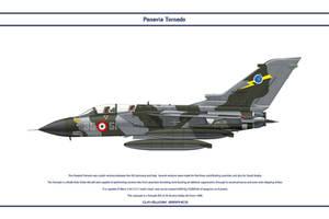 Tornado Italy 36 Stormo 1 by WS-Clave