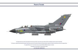 Tornado GB 31 Sqn 2 by WS-Clave