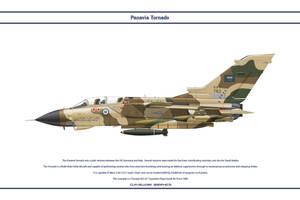 Tornado Saudi 7 Sqn 1 by WS-Clave