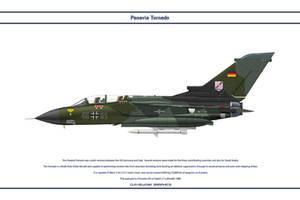 Tornado Germany JaboG 31 1 by WS-Clave