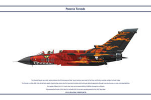 Tornado Germany JaboG 32 3 by WS-Clave